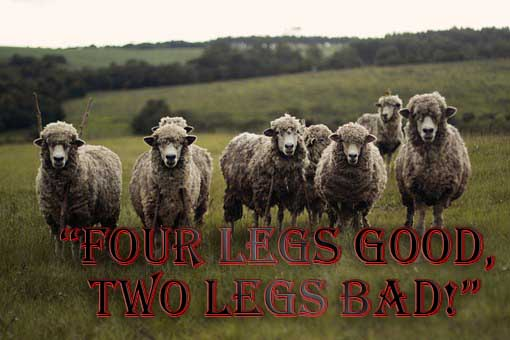 """four legs good, two legs bad!"""